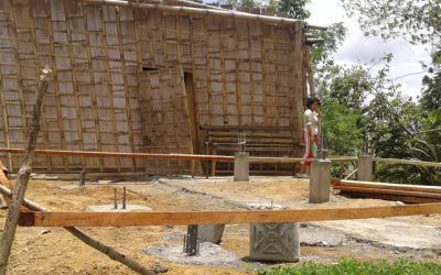 Typhon Haiyan : la reconstruction a démarré