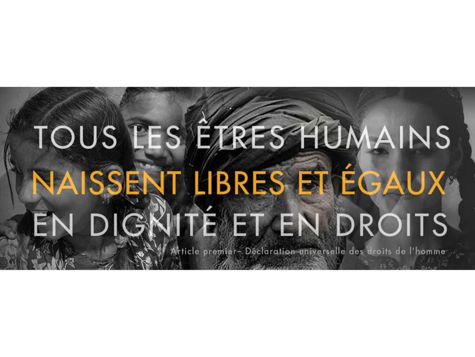 Enjeux et histoire des Droits humains: de la Déclaration Universelle des Droits de l'Homme aux Objectifs de Développement Durable